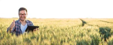 使用片剂的微笑的愉快的年轻农夫或农艺师在麦田 显示翘拇指和看直接地照相机 免版税库存照片