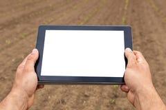 使用片剂计算机的农夫在农业培养的领域 W 免版税库存照片