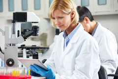 使用片剂计算机的女性科学家在实验室 图库摄影