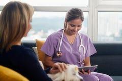使用片剂计算机的狩医在与狗的家庭急诊期间 库存图片
