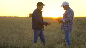 使用片剂计算机,两位商人农夫握手在麦田的在日落,合同成交握手质量 股票录像