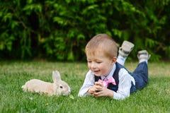 使用用在草的一只兔子的小男孩在公园 库存图片