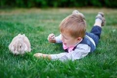 使用用在草的一只兔子的小男孩 免版税库存图片