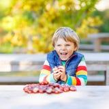 使用用栗子的小白肤金发的孩子在秋天公园 库存照片