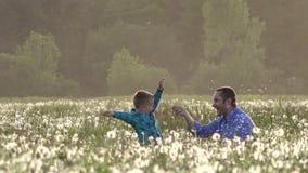 使用用蒲公英的父亲和儿子,愉快,微笑的家庭 股票录像
