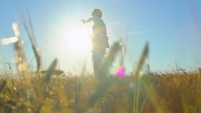 使用的父亲和的儿子,飞机胳膊剪影一起上升了在麦田,幸福家庭走的日落 影视素材