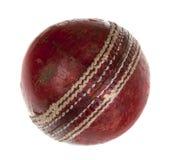 使用的球蟋蟀非常 免版税库存照片