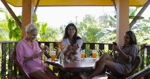 使用细胞巧妙的电话的女孩观看照片谈在大阳台在热带森林,在网上聊天妇女的小组  股票录像