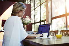 使用网书的一位成功的相当女性自由职业者的背面图为距离工作,当坐在现代咖啡店内部时 图库摄影