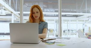 使用膝上型计算机的执行委员在办公室4k 股票视频
