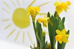 使用色的铅笔,春天上色抽象 免版税库存照片