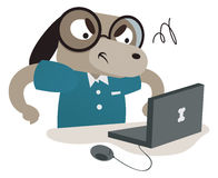 使用计算机的书呆子狗 免版税库存照片