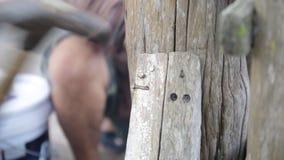 使用设备的木匠特写镜头修理家具 股票视频