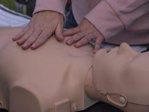 使用钝汉的CPR训练 库存图片