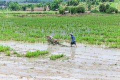 使用翻土机拖拉机的亚洲农夫在米领域 图库摄影