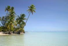 使美丽含沙靠岸 免版税库存图片