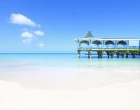 使美丽热带靠岸 库存图片