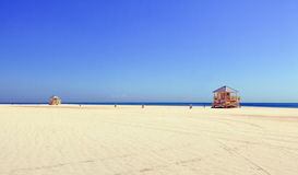 使美丽的crandon迈阿密公园靠岸 库存图片