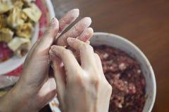 使肉处理样式的被添加的亚洲特写镜头烹调饺子装填传统其中 库存照片