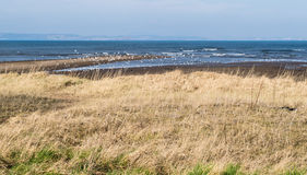 使苏格兰靠岸 库存照片