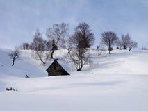 使荒凉的家的瑞士山中的牧人小屋 图库摄影