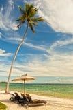 使躺椅靠岸在棕榈树在岸,桑给巴尔, Tanz下 库存图片