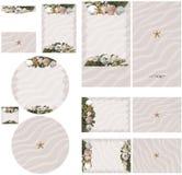 使贝壳靠岸,并且在桃红色沙子婚礼邀请的海草题材设置了2 库存照片