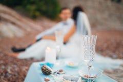 使黄雀色cofete de费埃特文图拉岛海岛野餐playa西班牙靠岸 图库摄影