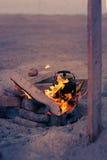 使黄雀色cofete de费埃特文图拉岛海岛野餐playa西班牙靠岸 库存图片