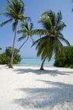 使cana多米尼加共和国的punta共和国靠岸 图库摄影