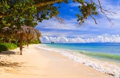 使digue海岛la热带的塞舌尔群岛靠岸 库存照片