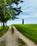 使Mugello佛罗伦萨Borgosanlorenzo意大利托斯卡纳vicchio绿色树环境美化 库存照片