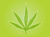 例证叶子大麻 免版税库存照片
