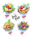 例证套新鲜水果花束 向量例证