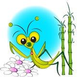 例证孩子螳螂祈祷 库存图片