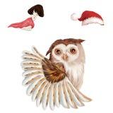 例证:大猫头鹰 女孩休眠 圣诞节帽子 库存照片