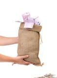 例证货币大袋向量 免版税库存图片
