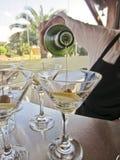 侍酒者倾吐的鸡尾酒马蒂尼鸡尾酒 免版税图库摄影