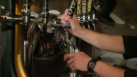 侍酒者在餐馆倒一杯啤酒 股票视频