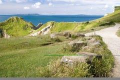 侏罗纪下来的海岸走 库存图片