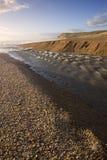 侏罗纪海岸 免版税图库摄影