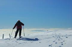 侏罗纪滑雪者 库存照片