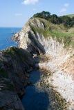 侏罗纪的海岸 库存照片