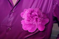 供以人员与一株牡丹的` s衬衣紫罗兰色颜色在扣眼 库存图片