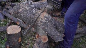 供以人员与锯,芯片,锯尘土落的锯切木头 影视素材