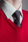 供以人员佩带的空白衬衣、红色毛线衣和领带 库存照片