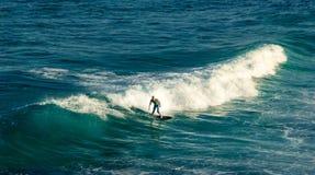 供以人员在他的冲浪板的冲浪者骑马在波浪在夏天在Tamarama海滩,悉尼澳大利亚: 免版税图库摄影