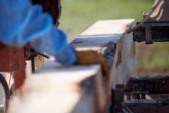 供以人员工作在便携式的锯碾碎的木材 免版税库存照片