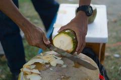 供以人员所有者使用刀子剥椰子 免版税库存图片