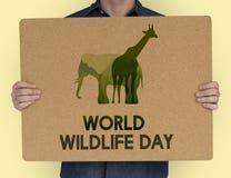供以人员拿着一个标志与世界野生生物天 图库摄影